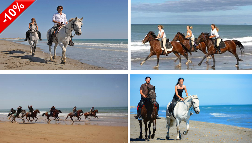 Agadir Horse & Camel riding
